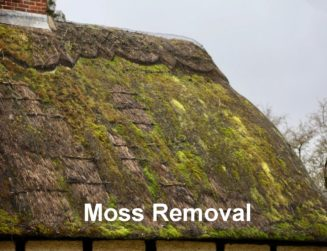 moss removal from thatched roof