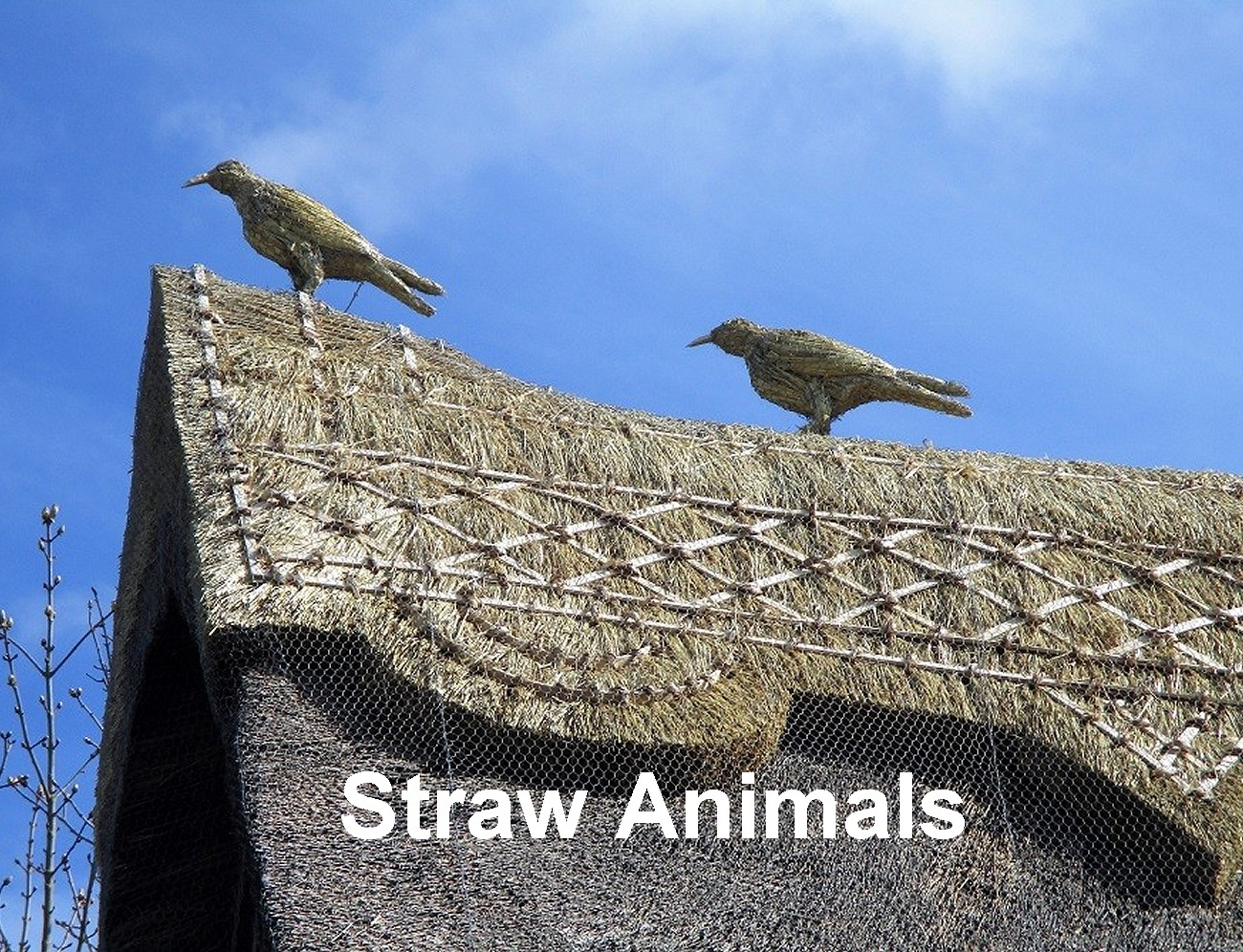 straw animals thatching thatched roof