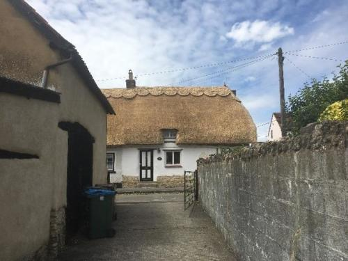 new-thatch-roof