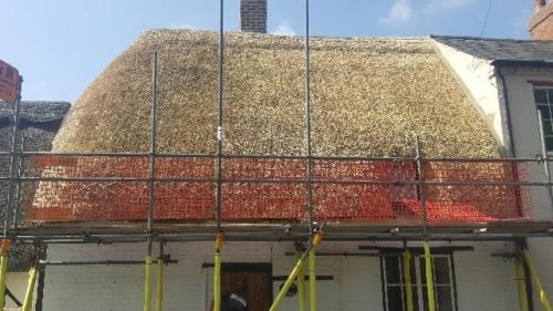 new-thatch-roof3