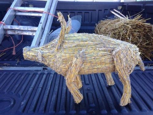 roof-animal-pig